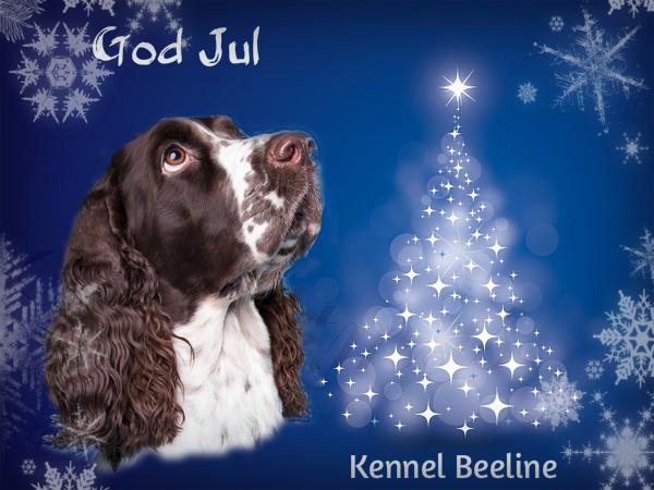 Julhälsning!