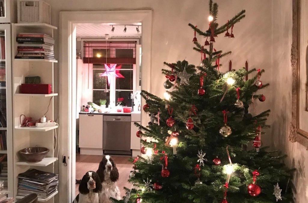 God Jul och god fortsättning!