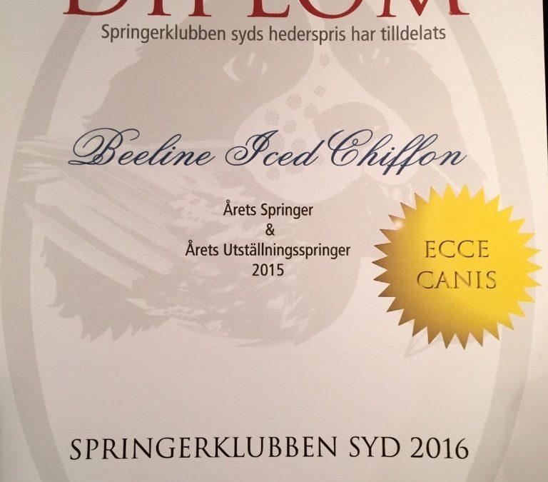 Årets Springer 2015